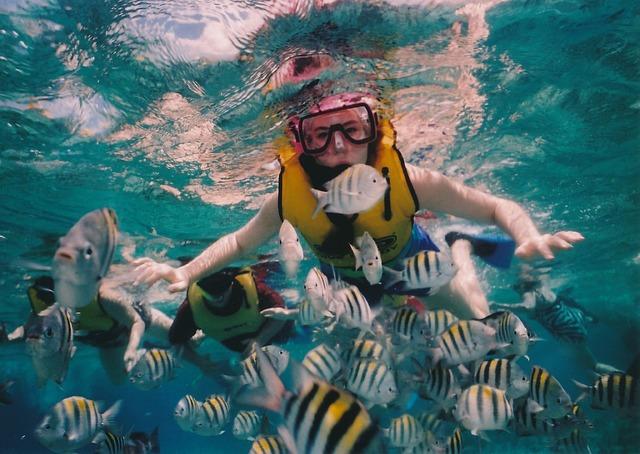 אפשר לעשות קורס צלילה במקסיקו בחודש ינואר